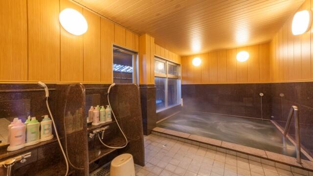 ビジネスホテル五井温泉の内湯